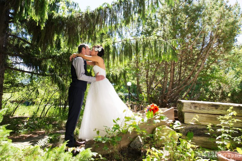 The bride and groom kiss under an amazing weeping willow