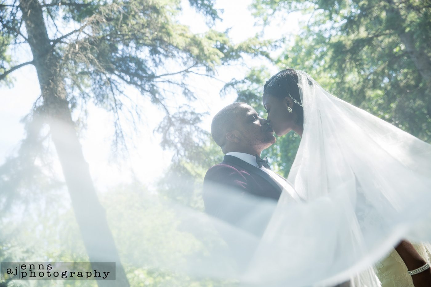 the couple kissing from under the veil