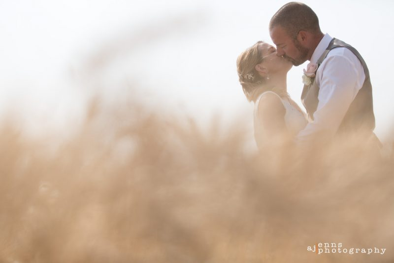 Low angle shot in the wheat of the couple kissing